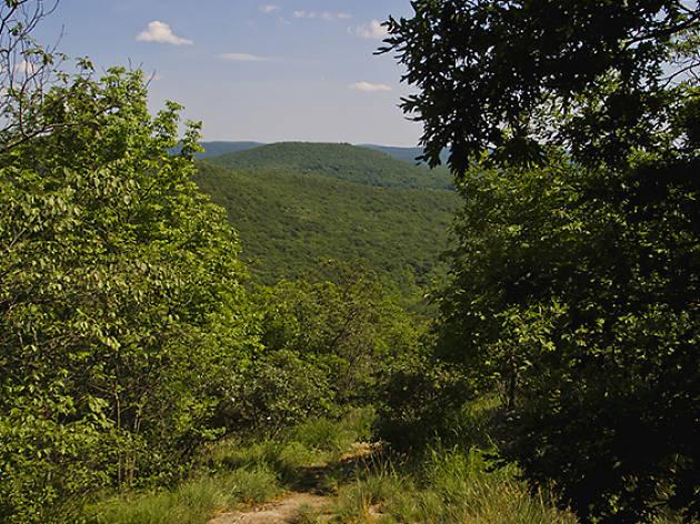 Macedonia Brook State Park