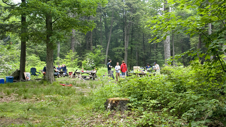 Best camping near NYC at state parks, campgrounds and more