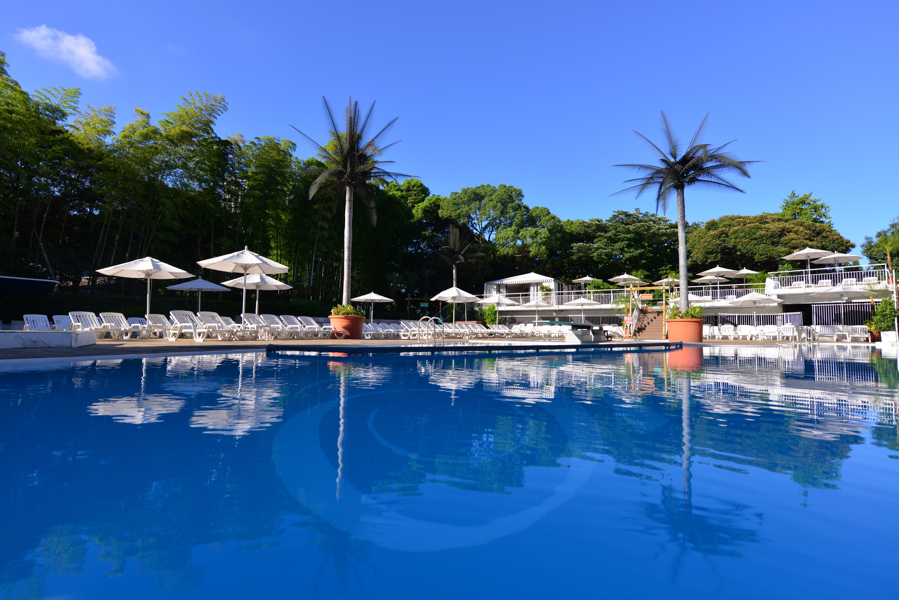 Garden pool at hotel new otani 2015 things to do in tokyo for Garden city pool hours