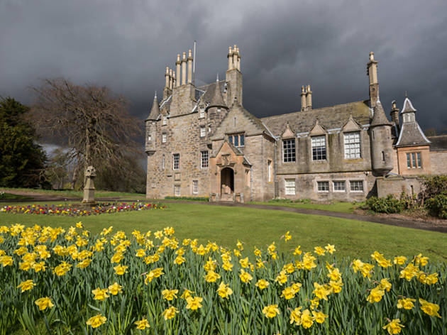 13 daffodils country house mansion