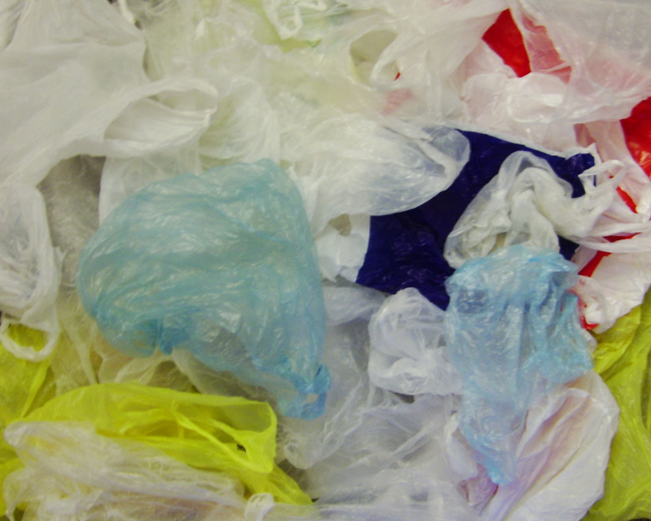 need to ban poly bags Richland county — columbia-area shoppers might no longer need to answer the question paper or plastic if richland county latches onto a proposal to ban plastic bags in the county.
