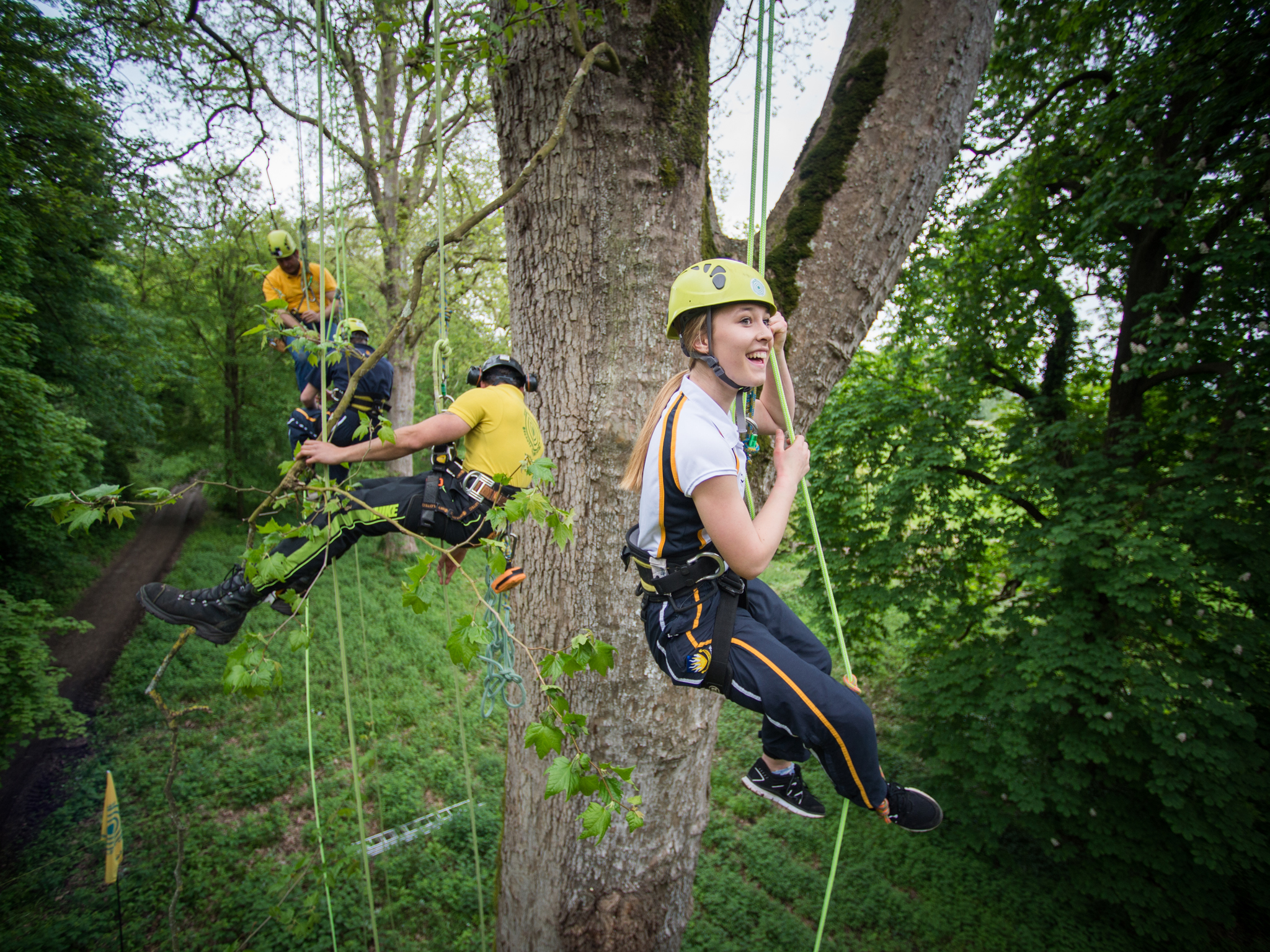 Go climb a tree at Ally Pally