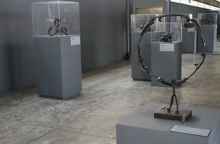 Exposición de Marysole Wörner Baz