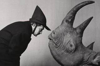(Philippe Halsman, 'Salvador Dali dans 'The Morning Show' de CBS-TV', 1956 / © Philippe Halsman Archive / Magnum Photos / Fundacio Gala-Salvador Dali, Figueres, 2015)