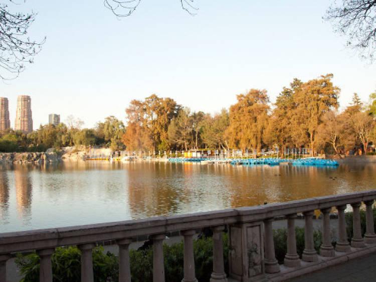 El Sope / Bosque de Chapultepec