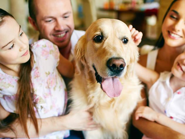 familia con perro
