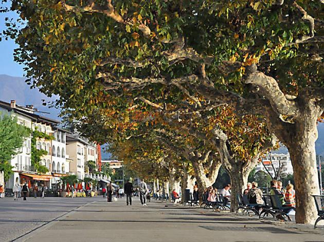 Piazza Giueseppe Motta