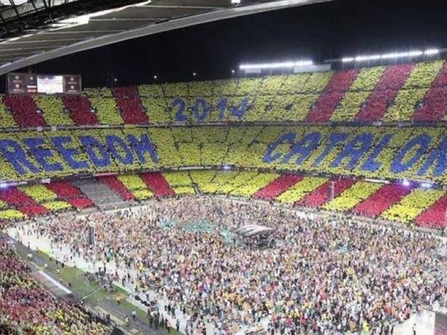 Tossudament. Imatges del procés català