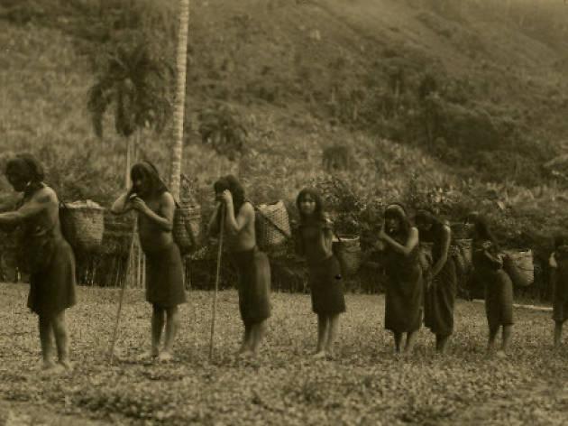 En la mirada del otro. Fotografía Histórica de Ecuador: la irrupción en la Amazonía