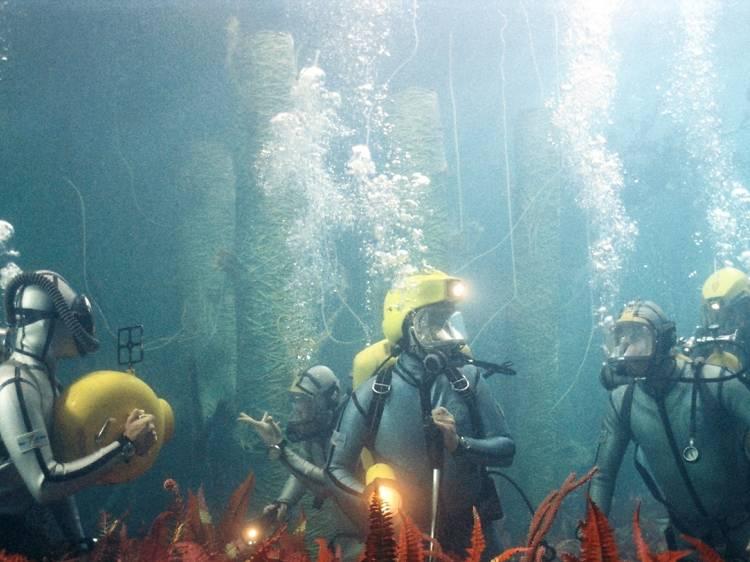 스티브 지소와의 해저 생활