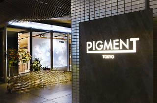 PIGMENT(ピグモン)