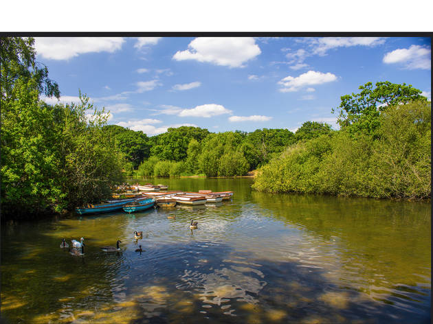 Escape the suburbs at Hollow Pond