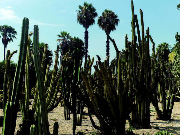 Jardins Costa i Llobera