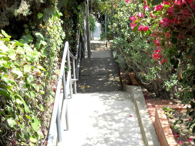 Music Box Steps, Silver Lake Stairs
