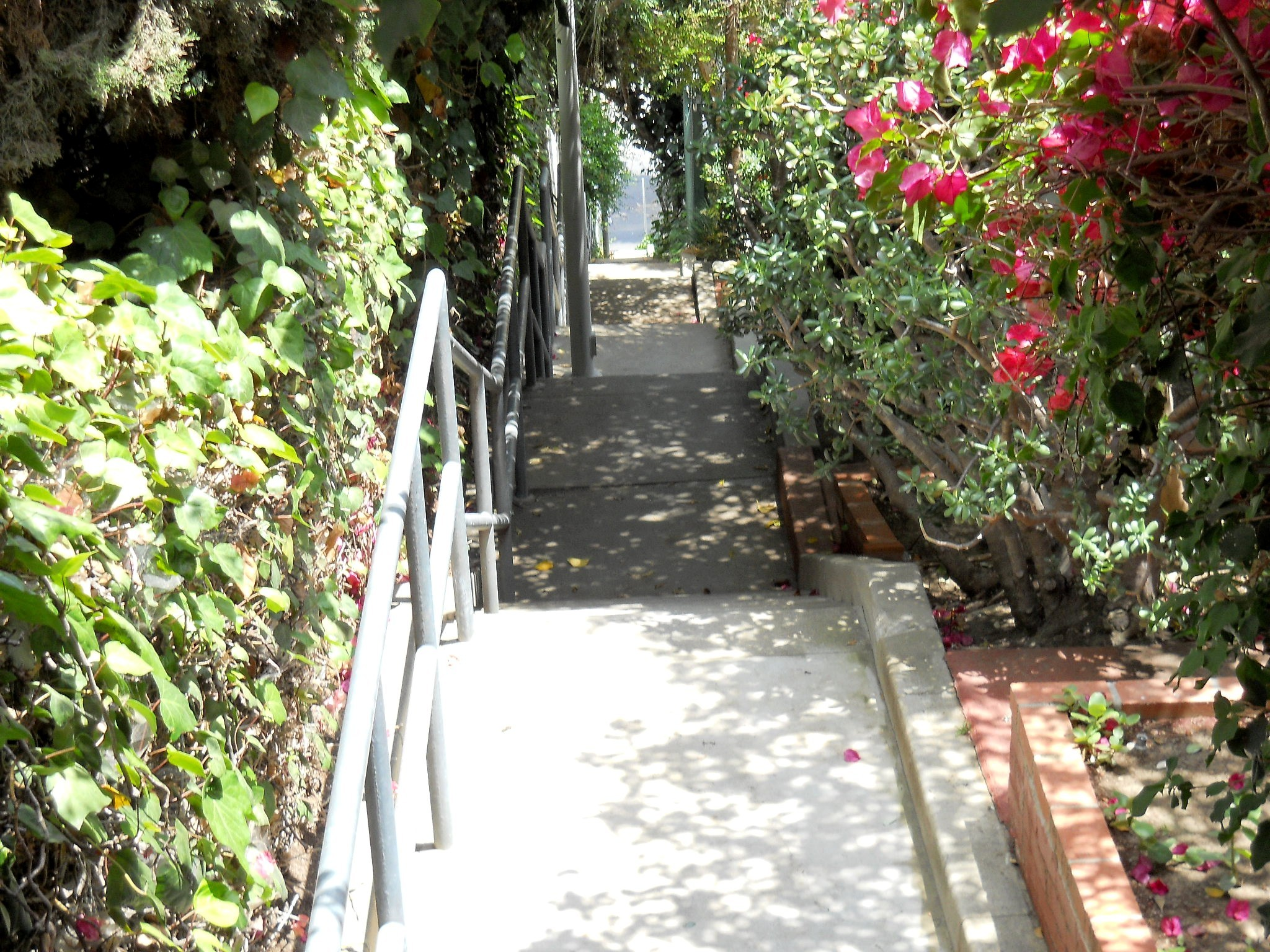 Music Box Steps, Silver Lake Stairs