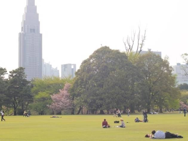 Get tranquil in Tokyo...