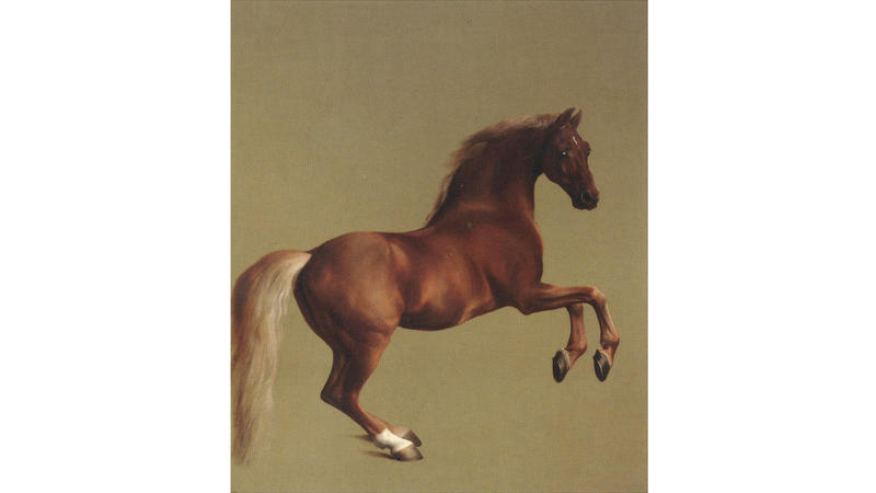 'Whistlejacket', 1762, by George Stubbs