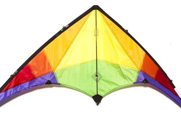 Easy to fly two line stunt kite