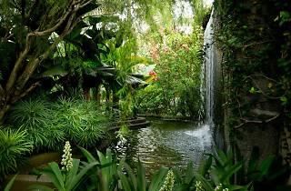 The Secret Garden at 1 Utama