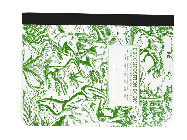 Ages 9–11: Dinosaurs Decomposition book