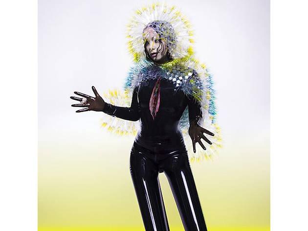 Björk, Vulnicura