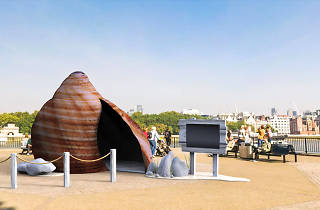 Giant shell washes up in Leeds to offer a multi-sensory experience of the coast
