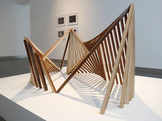 Raydale Dower, Poème électronique - Revealed Structure