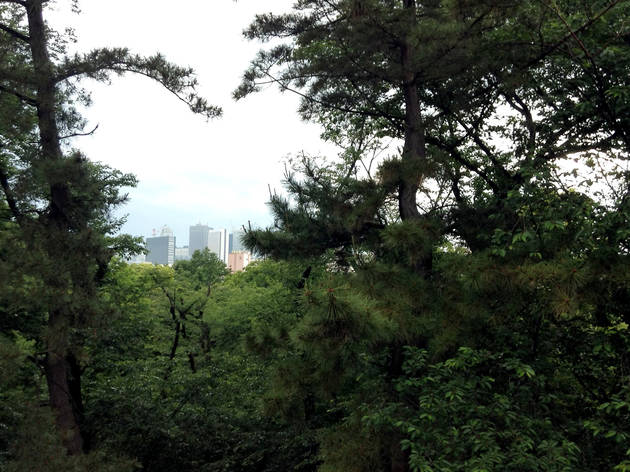 Toyama Park | Time Out Tokyo