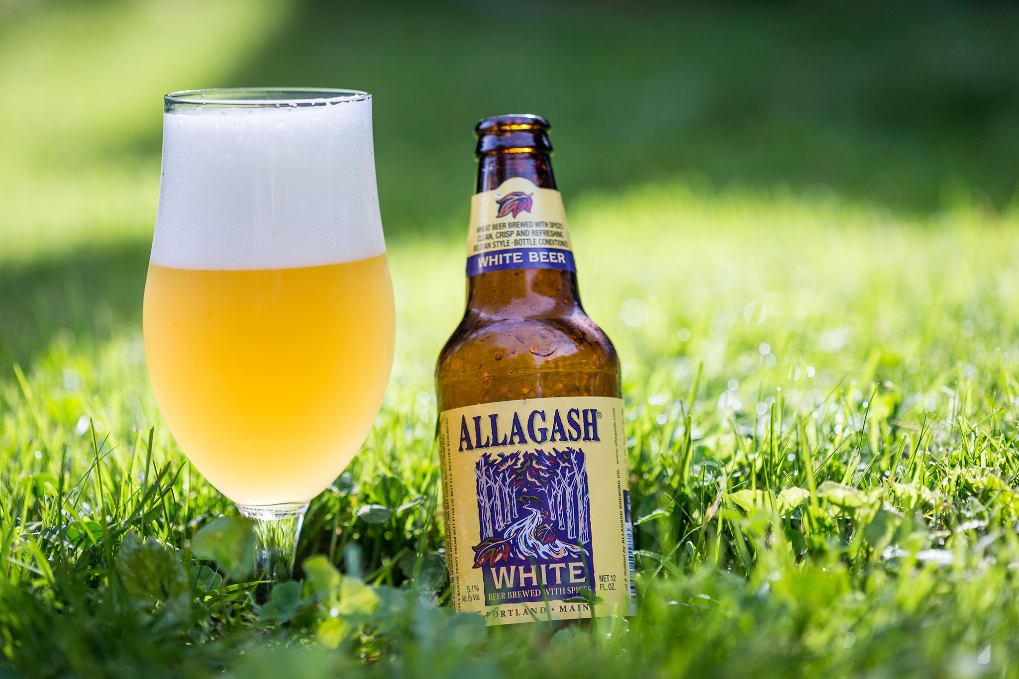 top craft beers best craft breweries in america for top lagers ipas 3129