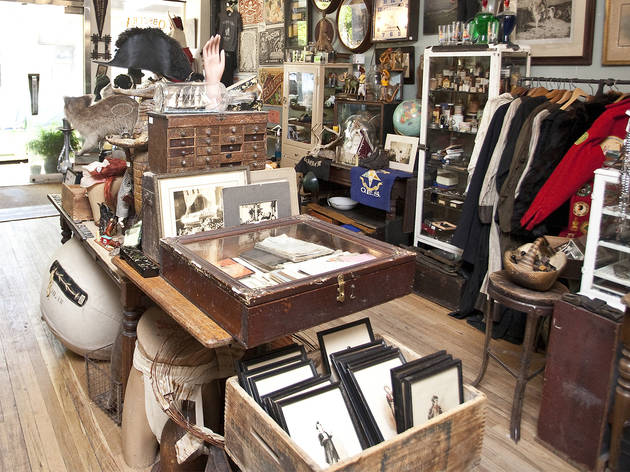 Obscura Antiques and Oddities