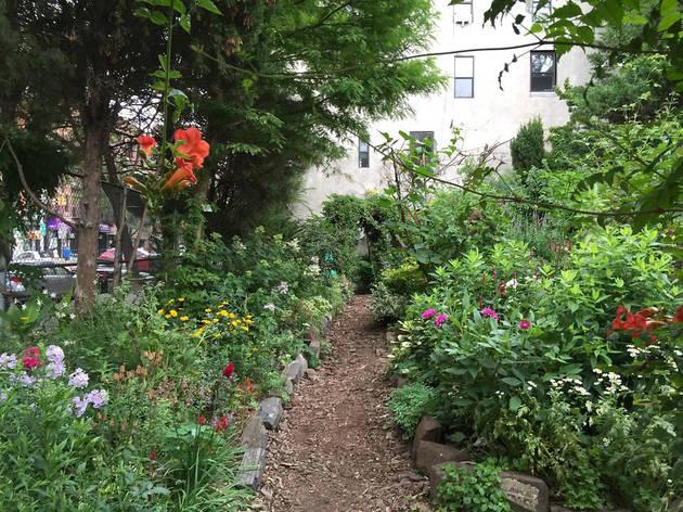 Ninth Street Community Garden