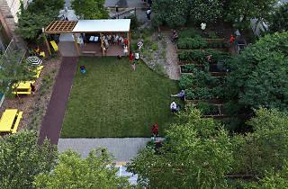 Willis Avenue Community Garden
