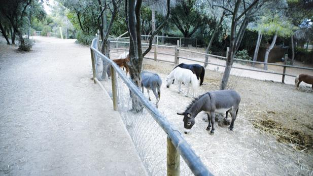 poni parc de l'oreneta
