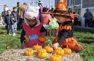 Brooklyn Harvest Festival on Pier 6