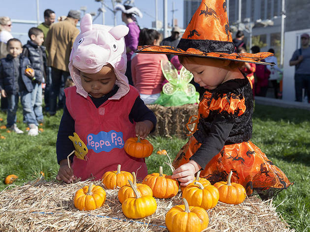Harvest festivals for families