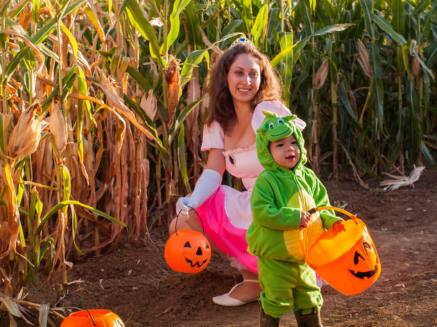 Corn mazes near NYC for families