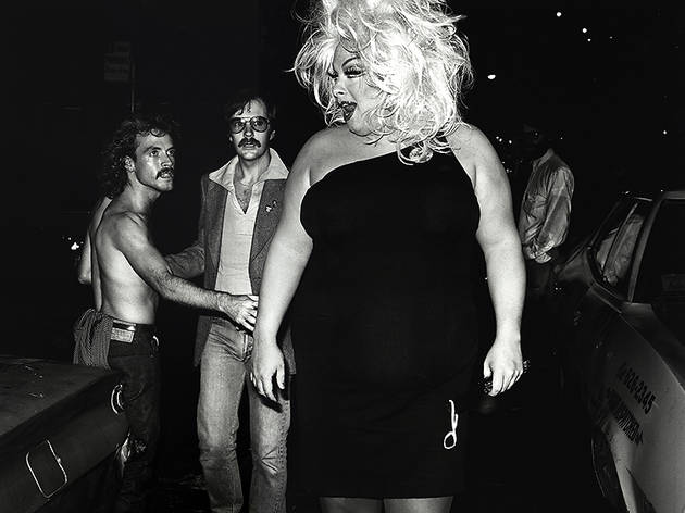 Divine on the Loose, n.d.