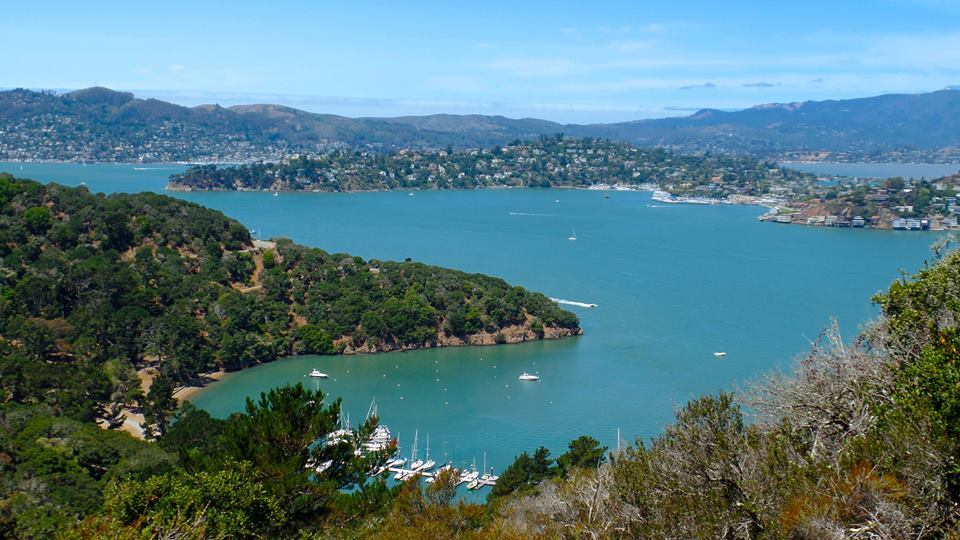 Tiburon and Angel Island