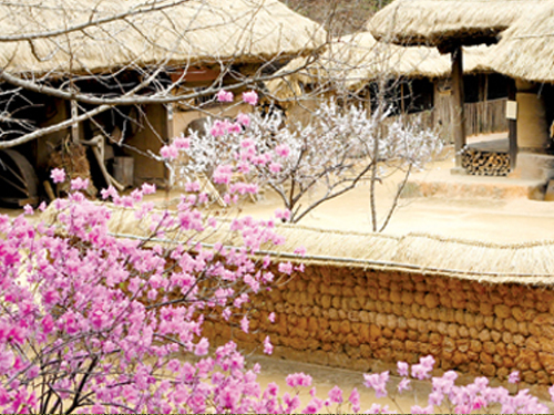 The Korean Folk Village