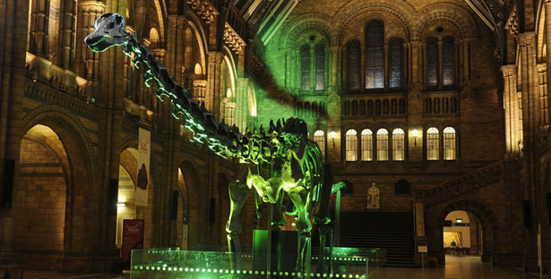 natural history museum silent disco