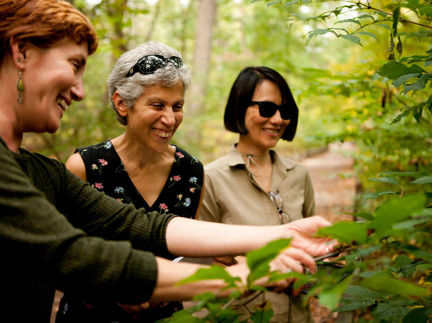 Foraging With a Survival Expert