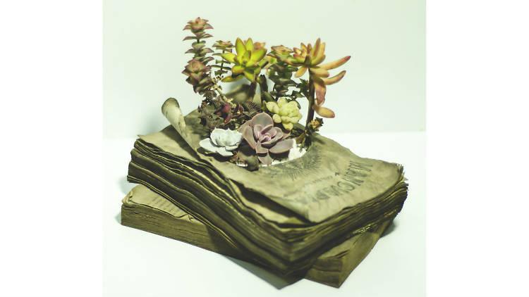 Una maceta en forma de libro de Mancuspias