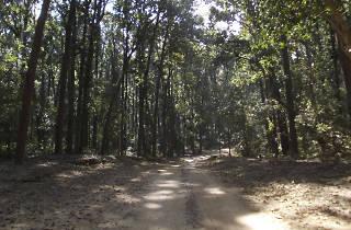 Parque Nacional del Tepeyac