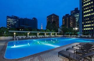 Garden Pool at ANA InterContinental Tokyo