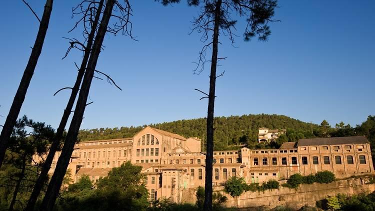 Parc Fluvial del Llobregat Colònia Vidal