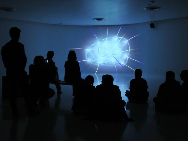 Instalación audiovisual de Chris Chafe y Greg Niemeyer