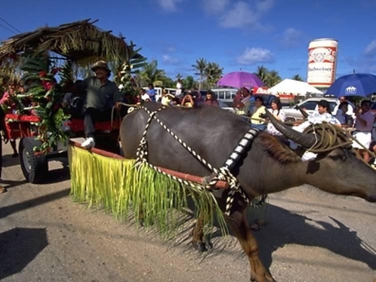 10. 伝統の祭に観光客も参加できる