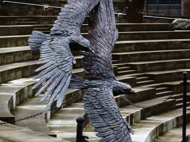 eagles dynamic earth