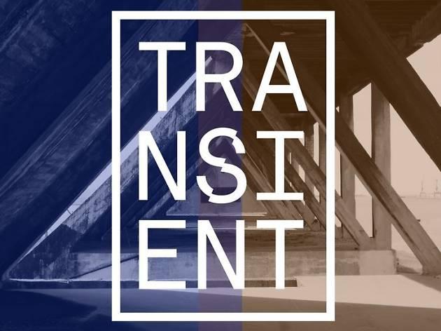transient festival logo