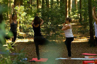 YOGABODY Fitness hike and yoga